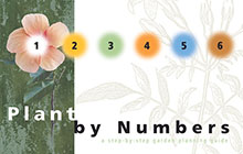 plantbynumbers-thumb